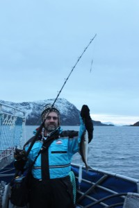 Wildlife expedition to Trollfjord